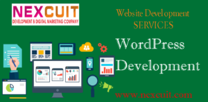 Nexcuit Web Solution –  Website Development Services
