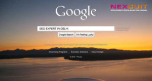 How You Can Reach the Best SEO Expert in Delhi