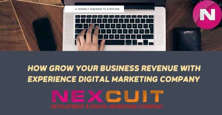 How can you grow your business revenue with Experience Digital marketing company