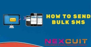 How to send bulk SMS